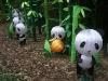 Panda\'s Paradise