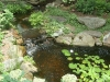 Wildlife Sanctuary Water Feature