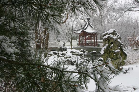 Chinese Garden in snow