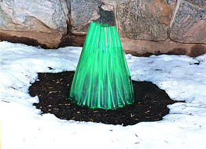 a picture of a WallOwater device for warming plants in cold weather