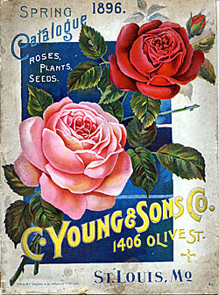a cover image of the 1896 C. Young & Sons Seed Catalog