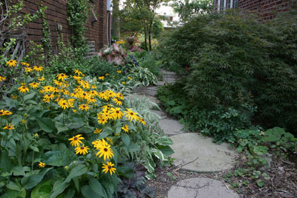 a picture of a well-designed narrow side yard garden path