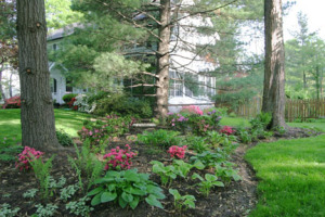 a picture of a side-yard shade garden