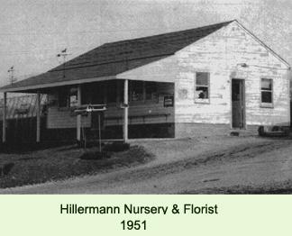 a photo of Hillermann Nursery circa 1951
