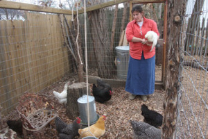 Kirkwood resident Roxanne Oesch with her chickens