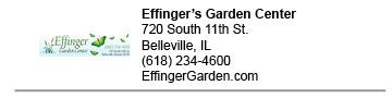 Effingers Garden Center link