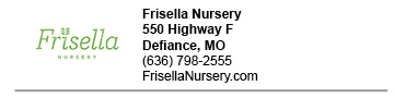 Frisella Nursery link