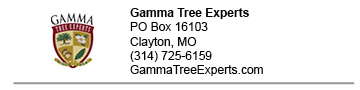 Gamma Tree Experts link