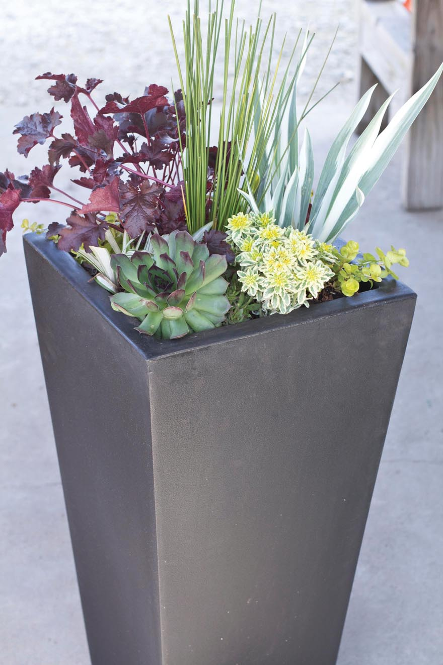 A picture of a contemporary plastic resin garden planter.