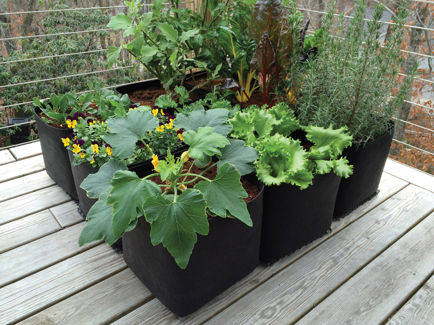 A picture of a Victory8 Cube fabric garden.
