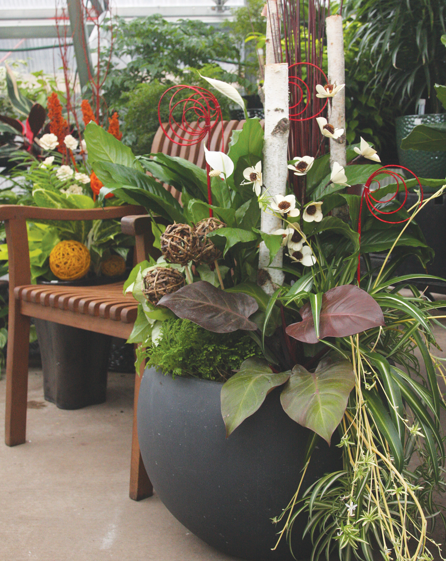 an image of decorating with houseplants
