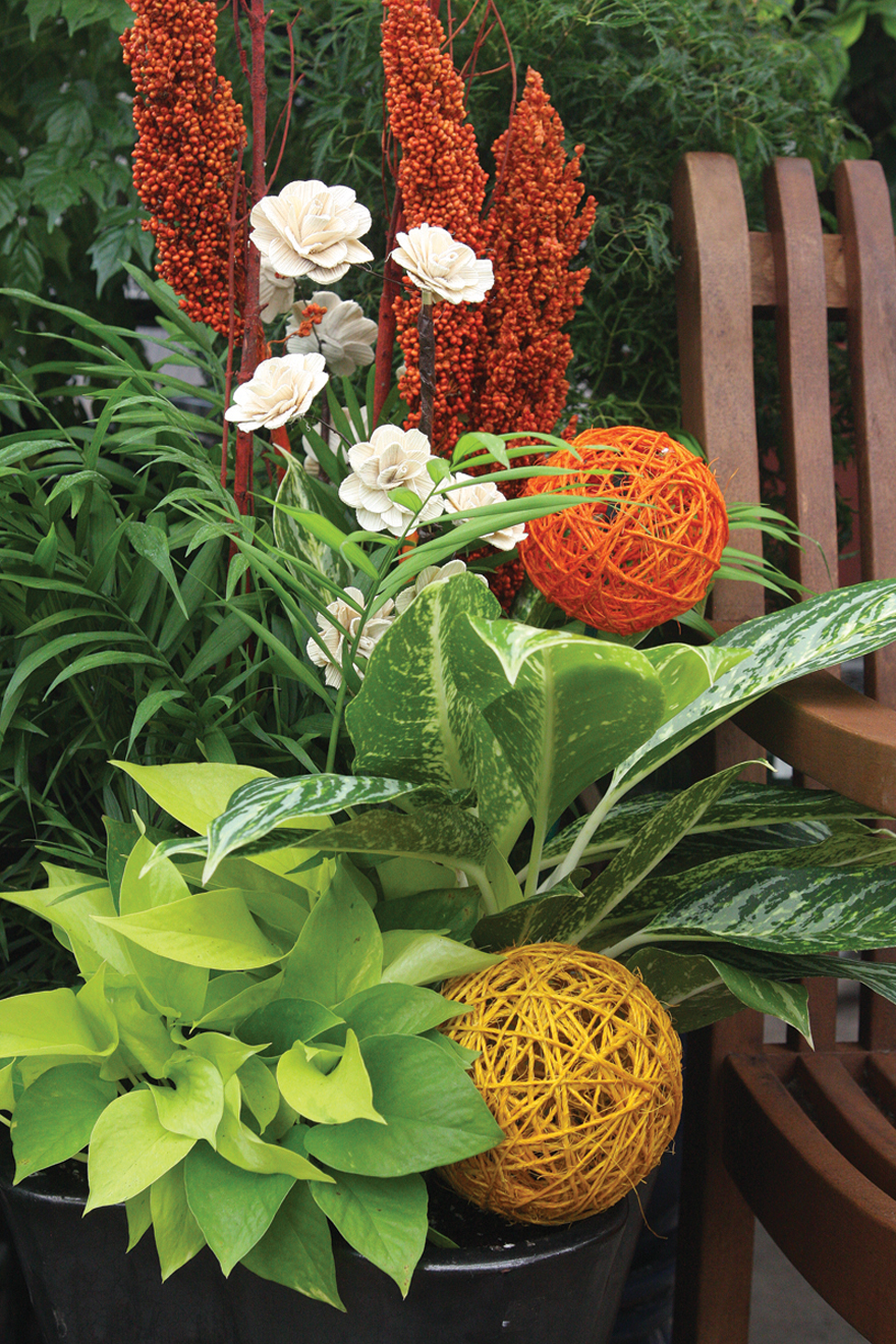 Houseplants used as interior decorating