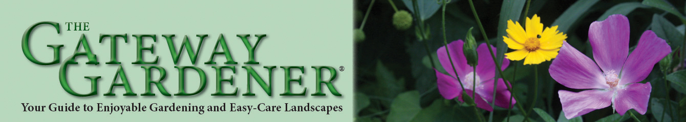 The summer header for GatewayGardener.com featuring a picture of poppy mallow and coreopsis.
