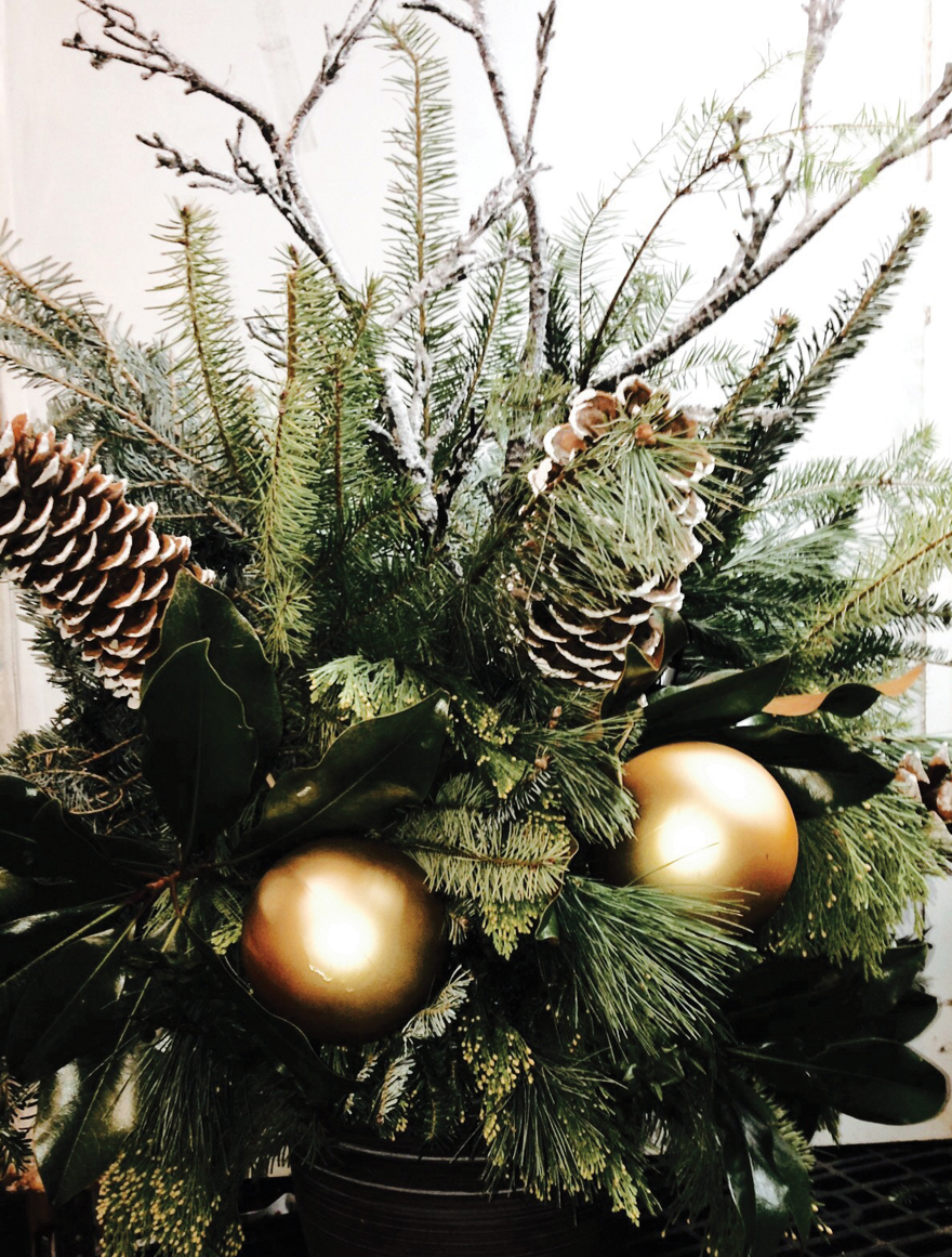 An image of evergreens, pine cones and golden ornaments in a floral arrangement