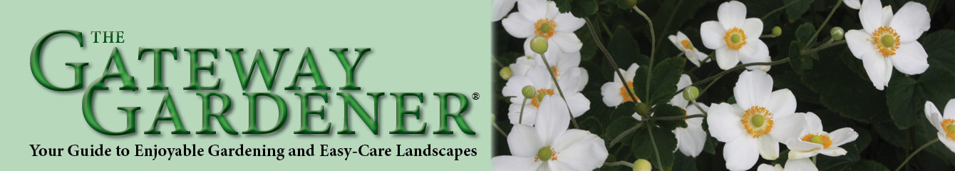 GatewayGardener.com fall header featuring Japanese anemone