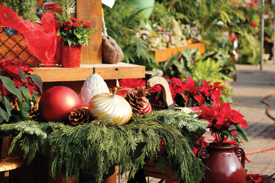 An image of holiday greens