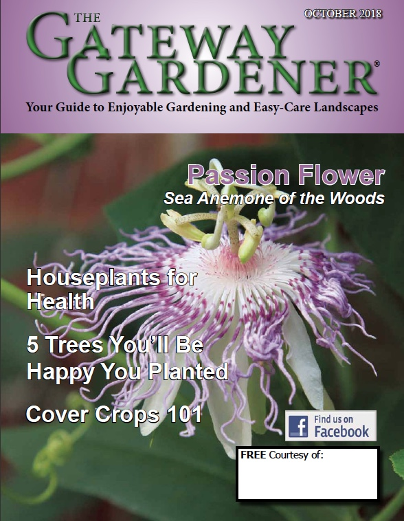 An image of The Gateway Gardener October 2018 cover