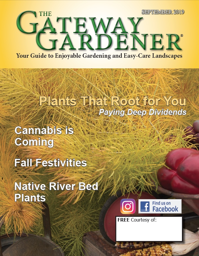 An image of the Gateway Gardener September 2019 cover