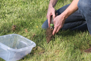 A picture of someone taking a soil sample